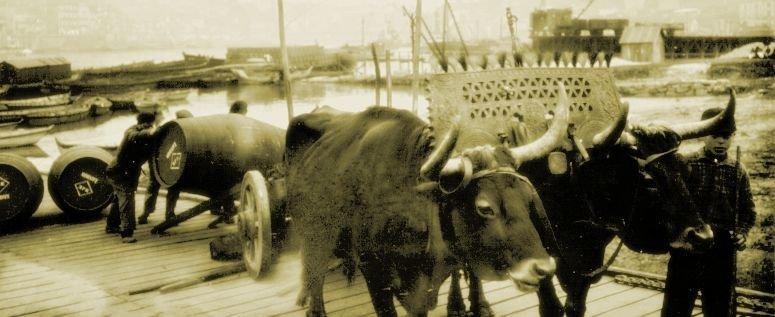 Port geschiedenis